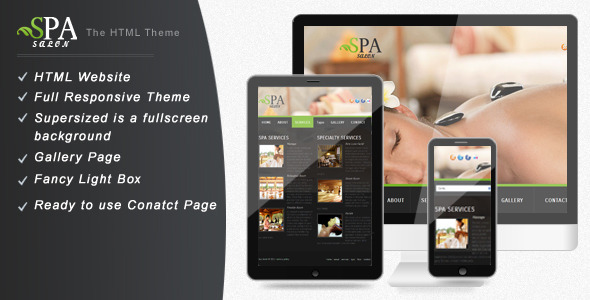 ThemeForest SPA SALON Simple & Creative Website Template 3401644