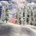 Winter Landscape - PhotoDune Item for Sale