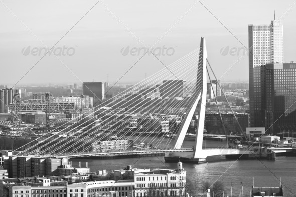 Erasmus Bridge in Rotterdam - Stock Photo - Images