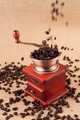Coffee beans flow on coffee grinder - PhotoDune Item for Sale