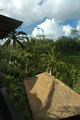 Bali Rice Terraces and Rooftops - PhotoDune Item for Sale