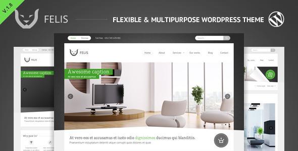 ThemeForest Felis Flexible & Multipurpose Wordpress Theme 1596339