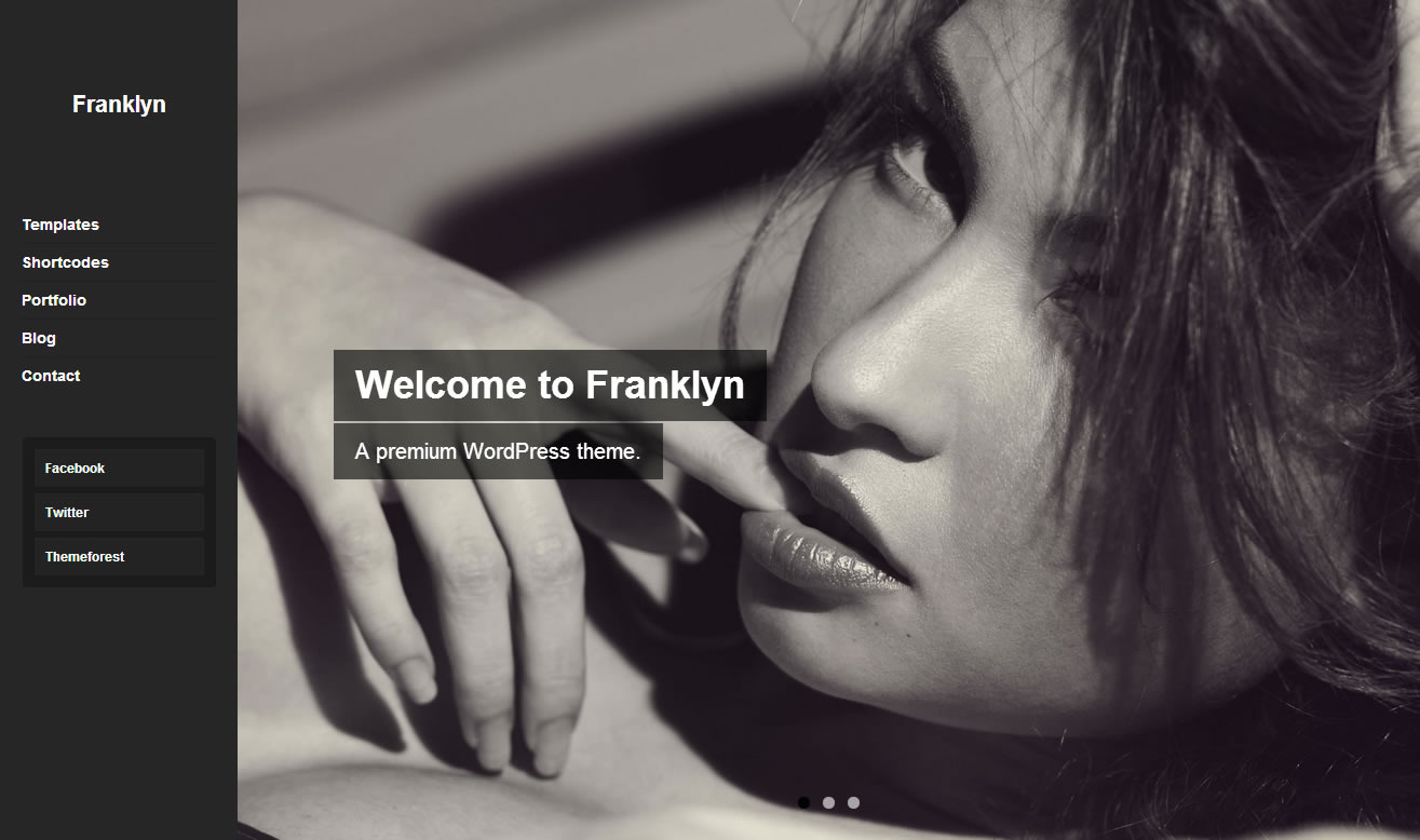 Franklyn - Portfolio & Blog WordPress Theme