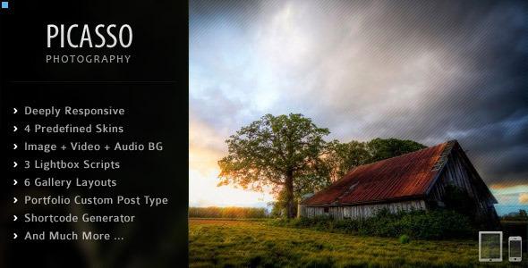 ThemeForest Picasso Responsive Photography & Portfolio Theme 2700559
