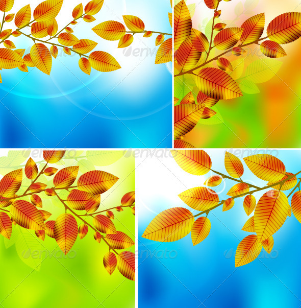 GraphicRiver Vector Autumn Leaves Backgrounds 3443884