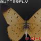 Butterfly V01-1 - ActiveDen Item for Sale