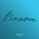 Boson - creative photo and video WP theme