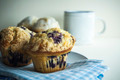 Blueberry Muffin - PhotoDune Item for Sale