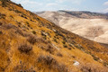 Desert Mountains Landscape - PhotoDune Item for Sale