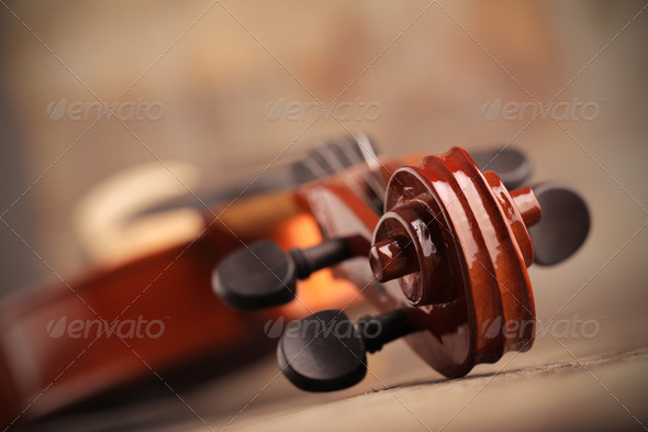 Violin close up - Stock Photo - Images