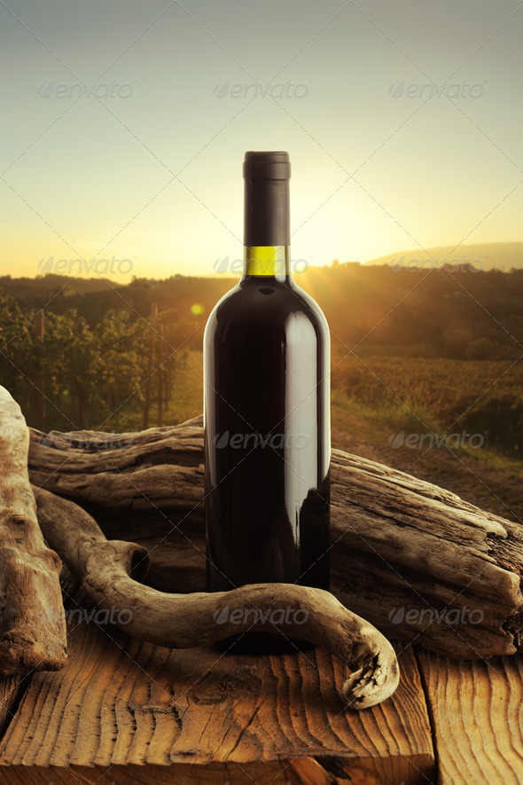 Wine and vineyard - Stock Photo - Images