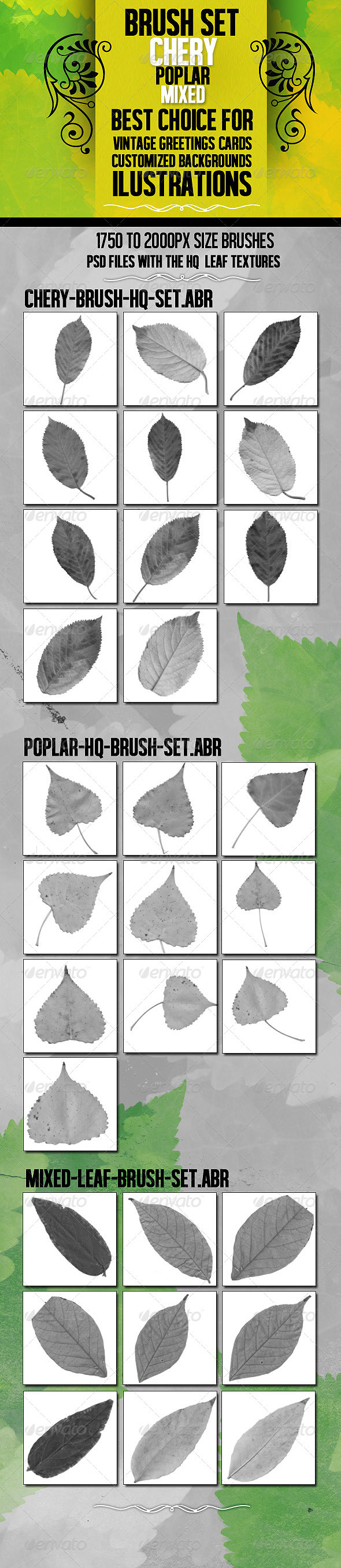 GraphicRiver Leaf Brush Set With 3 HQ PSD resource 3444151