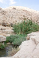 Desert Mountains Landscape and Reed - PhotoDune Item for Sale