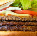 Burger macro shot - PhotoDune Item for Sale