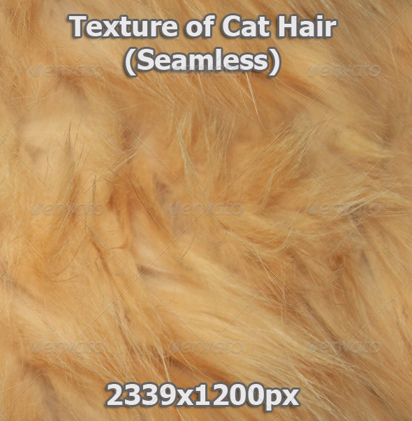 GraphicRiver Cat Hair Seamless 3473062