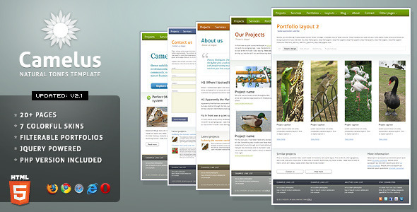 ThemeForest Camelus Nature Tones Business Template 76549