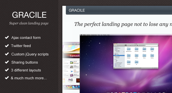 ThemeForest Gracile Super Clean Landing Page 346870