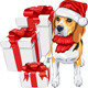 Dog Beagle in Santa Claus Hat - GraphicRiver Item for Sale