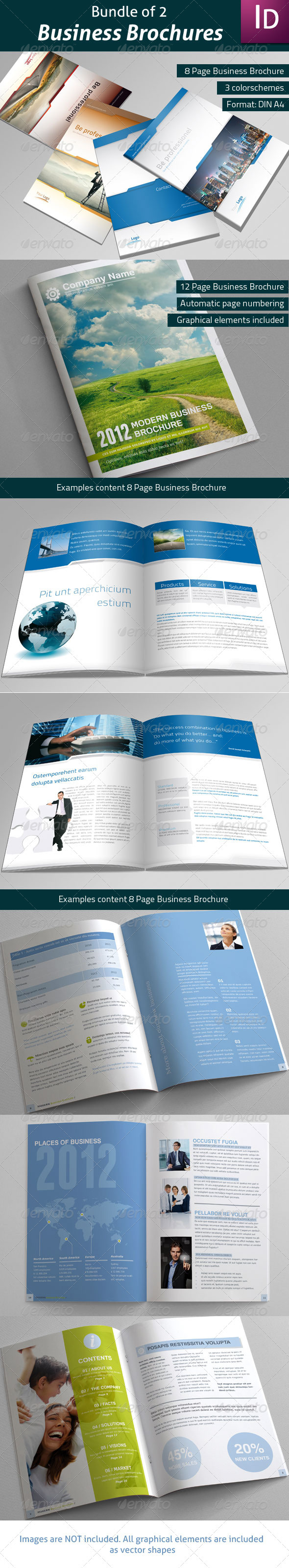 GraphicRiver Bundle of 2 Business Brochures 3477908