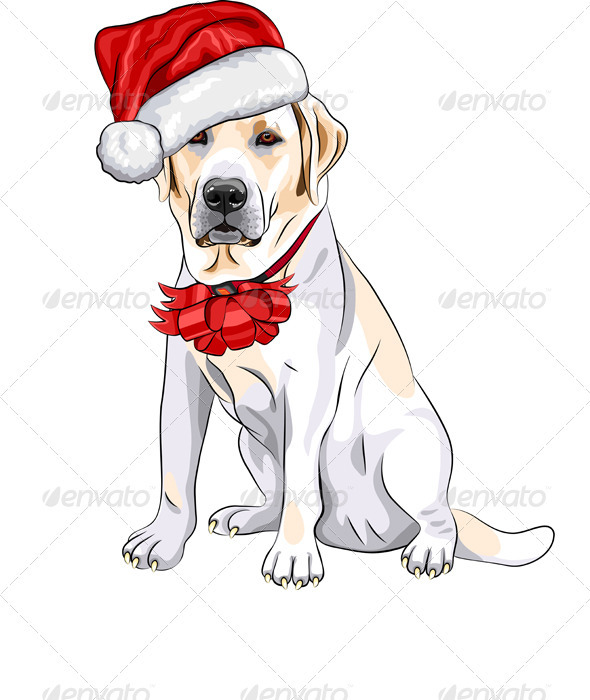 GraphicRiver Vector Dog Labrador in the Red Hat of Santa Claus 3499942