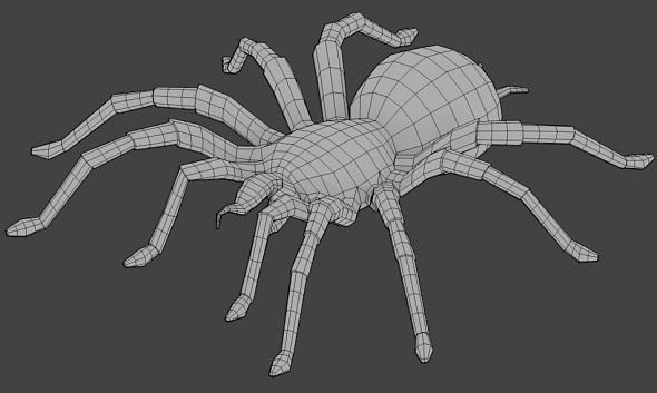 3DOcean Spider Base Mesh 3504271
