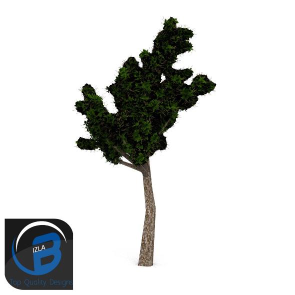 3DOcean tree 5 3505332