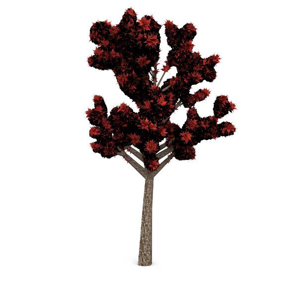 3DOcean Tree 8 3506084
