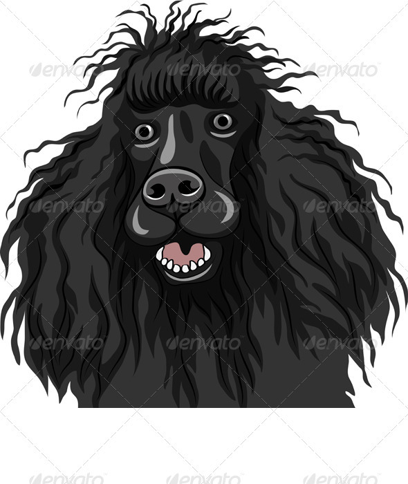 GraphicRiver Vector Black Smiling Dog Poodle Breed 3512656