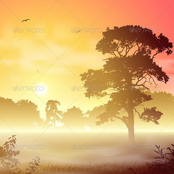 GraphicRiver Misty Landscape 3517058