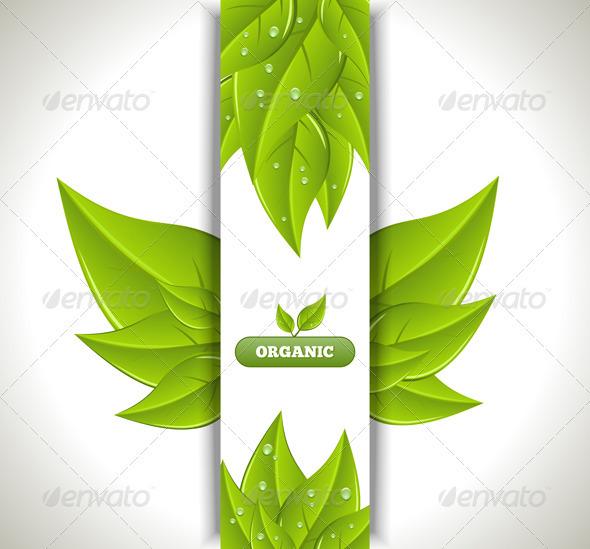 GraphicRiver Eco Banner 3519380