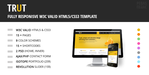 ThemeForest TRUT Fully Responsive HTML CSS Template 3519516