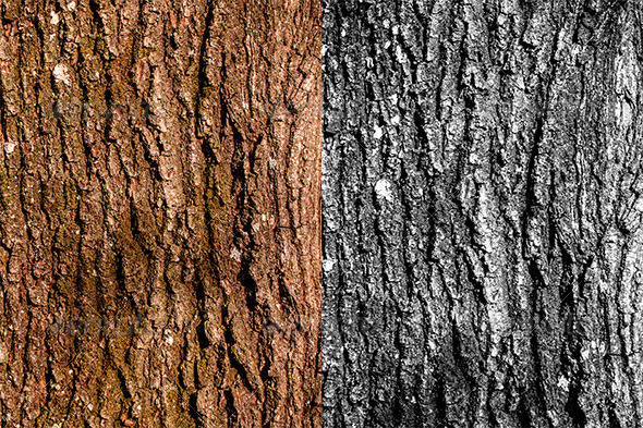 GraphicRiver Wood Texture 3520984