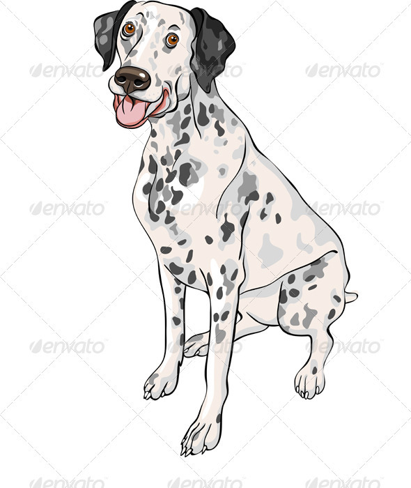 GraphicRiver Vector Sketch Dog Dalmatian Breed Smiles 3511570