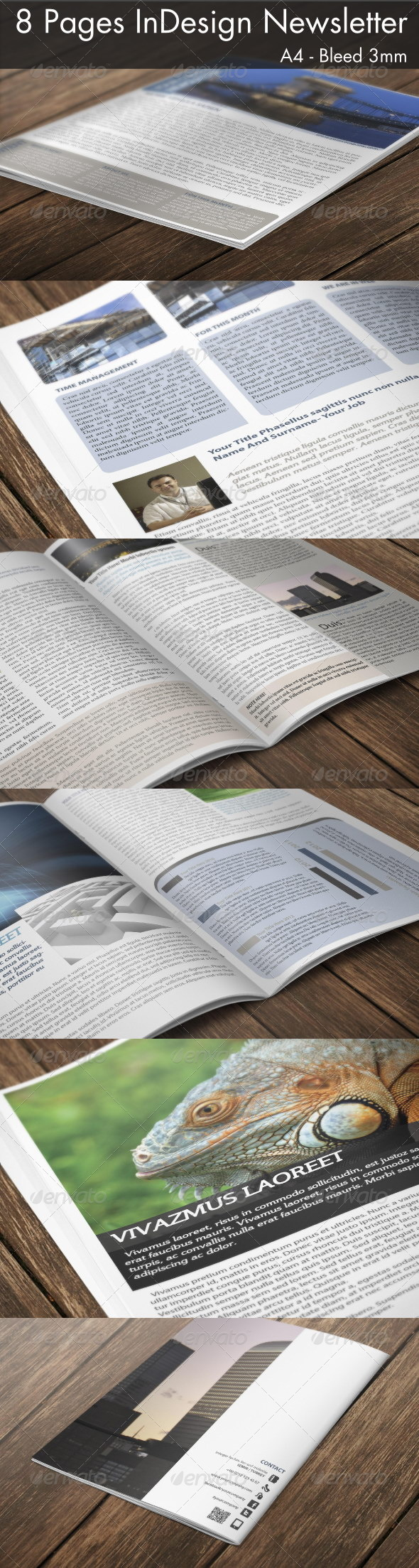GraphicRiver 8 Page InDesign A4 Newsletter 3530622