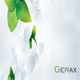 Gerax