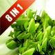 Logo Identi Engine V2 - VideoHive Item for Sale