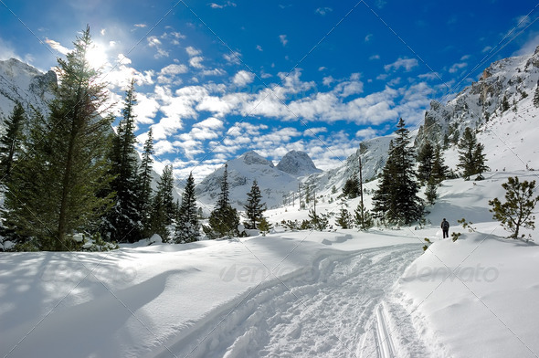 Sunny winter in mountain - Stock Photo - Images