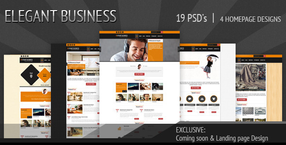 ThemeForest Elegant Business PSD 3326058