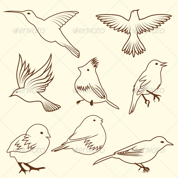 GraphicRiver Set of Different Bird Sketches 3542946