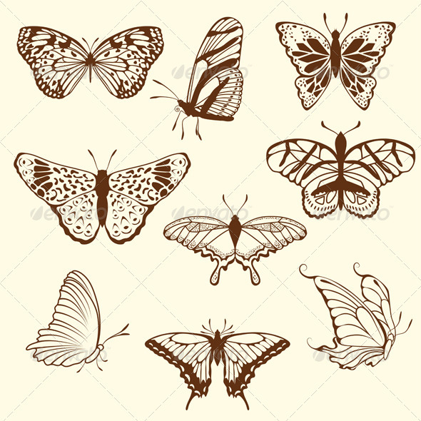 GraphicRiver Set of Different Butterfly Sketches 3542948