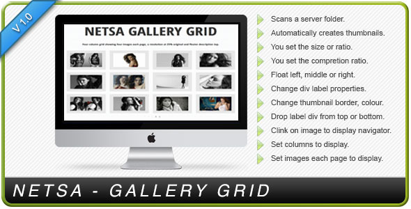 CodeCanyon NETSA GALLERY GRID 3546918