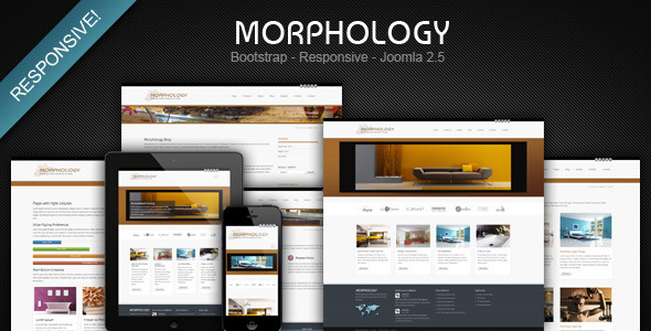 ThemeForest Morphology Responsive Joomla Business Template 3214036