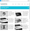 04-elegantica-facebook-template-home-1.__thumbnail