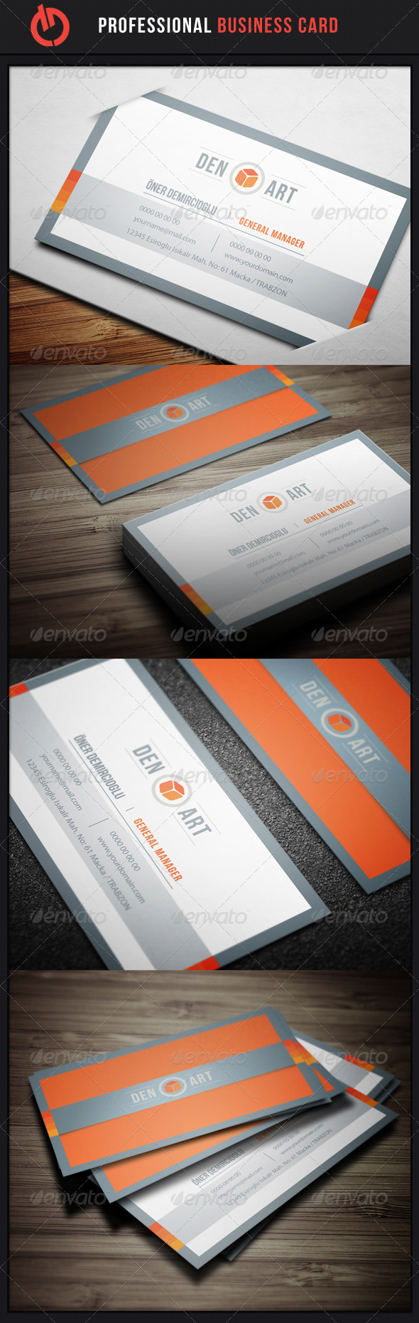 GraphicRiver Professional Business Card 12 3553607