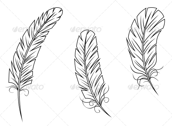 GraphicRiver Feathers and Quills 3562268