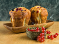 seasonal tasty muffins - PhotoDune Item for Sale