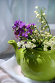 Springflowers in a teapot 2 - PhotoDune Item for Sale