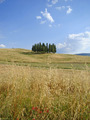 Orcia Valley 2 - PhotoDune Item for Sale
