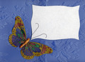 Butterfly in Fabric on Textiles 2 - PhotoDune Item for Sale