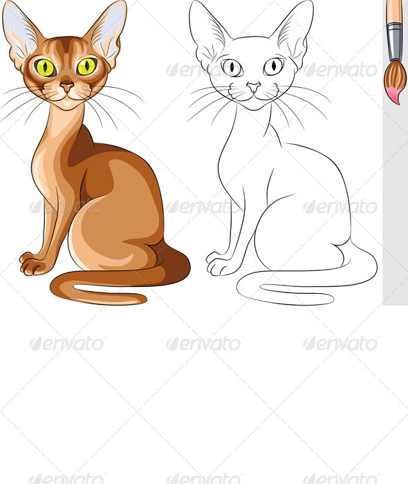GraphicRiver Vector Coloring Book of Serious Red Cat Abyssinian 3568815